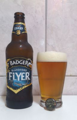 Badger_Blandford_Flyer